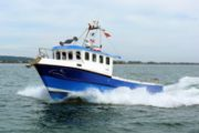 Cygnus Cyfish 33 Power Boat For Sale