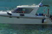 Arrowcat 30 Power Boat For Sale
