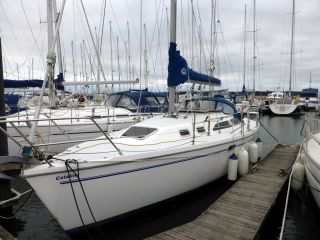 buy Catalina 320C For Sale