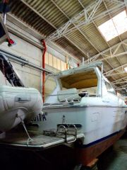 buying Mochi Craft Dominator 35 For Sale