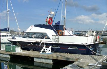buy Powles 41 For Sale