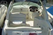 Sea Ray 240 DA Power Boat For Sale